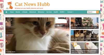 Cat News Hubb