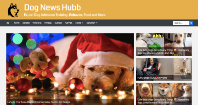 Dog News Hubb